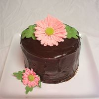 Gerber Daisy Cake Dark Chocolate Cake with Peanut Butter filling. Covered in chocolate ganache. Gumpaste daisies.