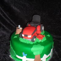 Riding Lawn Mower Cake