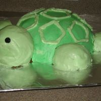 3D Turtle Cake I made this BC frosted cake using the large and mini WIlton sports ball tins.