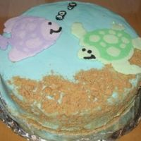 Ocean Themed Fbct Cake This is my 1st time doing a FBCT. It was fun to make, but I need a lot more practice!