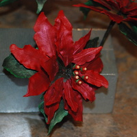 Poinsettia This is the first gumpaste flower I've ever made, and I think it--and its three siblings--came out GREAT!