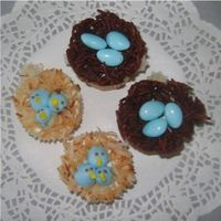Baby Blue Bird Nests These were done for a cake tasting. The baby shower theme is nesting.