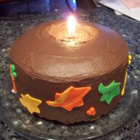 Thanksgiving Candle   Chocolate cake with chocolate frosting and fondant leafs. First attemp at a candle cake. It turned out ok.