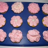 Img_0623.jpg Practice cupcakes...first time doing flowers.