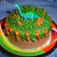 Dinosaur Smash Cake ..we made this for my sons friend who lives across the street for his birthday. He is such a good kid and was so happy to get it. He took...