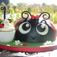 Ladybug Ladybug is carved from an 8in cake. MMF and modeling paste. With 72 coordinating cupcakes.
