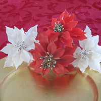 Gumpaste Poinsettias Gumpaste poinsettias made after watching Edna's Poinsettia DVD. If you like this flower, get the DVD. You won't be disappointed...