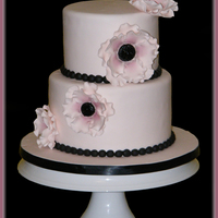 Pink And Black Anemone Wedding Cake Two tier small wedding cake. Covered in fondant with handmade gumpaste anemones.