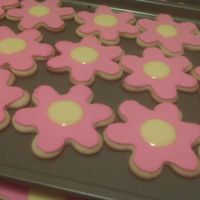 Spring Cookies NFSC with Antonia74 RI