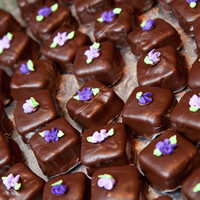 Ganache Covered Minicakes These were chocolate mini cakes baked in the Wilton silicon brownie pan and covered with melted ganache. The flowers were royal icing.