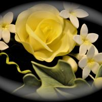 Yellow Gumpaste Rose Yellow gumpaste rose with stephanotis filler flowers and english ivy. Thanks for looking !