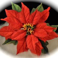 Poinsettia This is my first gumpaste Poinsettia. I made it for a December Birthday Cake.