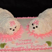 Maltese Birthday Cake This is a WASC cake with raspberry filling. The dogs are carved cake and cupcakes. It's my Malteses birthday and I wanted to make it...