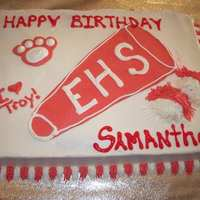 Hsm Cake I got this idea from another CC member. My neice loved the concept so I made her a cake similar to the original. All buttercream icing....