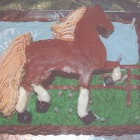 Bailey's Birthday Cake   American Saddlebred horse made of Cake and BC (2 inches high) and two-layer 9x13 under, with BC grass and basket weave.