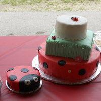 Ladybugs   12in round, 8in square, 6in round covered in almond butter ream & then covered in MMF.