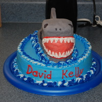 Shark Cake My first time with fondant, I am not sure I like it, but I will keep working with it and getting use to it.