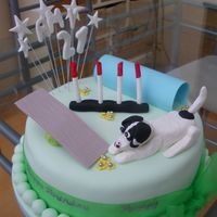 Dog Agility I made this for my friend's daughter's 21st birthday. The cake is covered in sugarpaste and the dog and equipment made from...