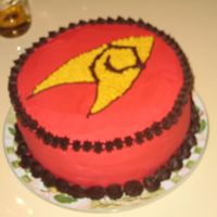 Star Trek - Operations Symbol  This was my bf's birthday cake. We're both trekkies, and as the movie was coming out the following month, I decided to base his...