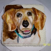 "Cheddar's Thank You For The Vet Made as a ""thank you"" for the vet that treated this Beagle, whose name is ""Cheddar"". Vanilla cake w/vanilla butter..."