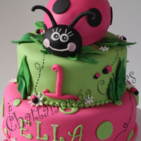 "Ella's First Birthday (Lady Bug) This design was inspried by ""Fantasticakes"" Lady Bug Cake (Thanks for your help Cécile!) My customer wanted Lime Green..."