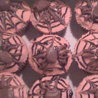 Spider Cupcakes Made these for a friend having a halloween party at work, i am pretty proud of them! the spiders are tootsie rolls flatted out and cut. TFL...
