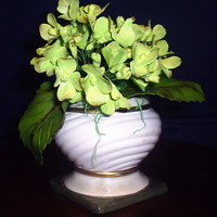 Hydrangea In Pot Green gum paste hydrangea were dusted with white sparkle, apple green, and chocolate petal dust. These flowers took first place in the...