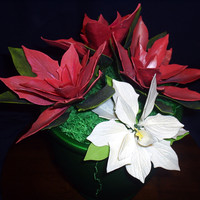 Poinsettias In Pot Gum paste was used to make these white and red poinsettias. These flowers took 2nd place at the Central Florida Fair recently in the...
