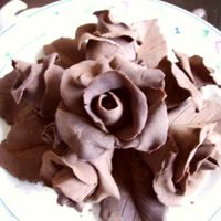 Modeling Chocolate Roses my first try at modeling chocolate