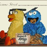 Sesame Street  This cake caused some challenges for me. I made it before I learned how important using a firm cake for sculpting was. The cake I used for...