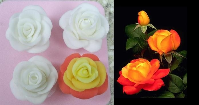 Fondant Roses  First attempt at fondant. The colored rose I attempted to look like a judy garland rose one of my friends loves. i included a picture of...