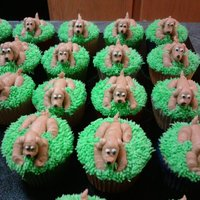 Puppy Cupcakes all decorations made from buttercream icing