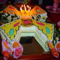 Butterfly Cake With a rectangular cake cut a piece on the top border of the cake to make the body (__) , then the rest of the cake cut in in an ( X ) and...