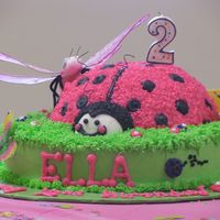 Lady Bug  Lady bug cake body is ball pan and icing is all BC. I found these great butterflies and dragon flies at family dollar for accent pieces on...