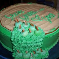 Caramel Apple Cake  White cake infused with Sour Apple candy flavoring with Caramel frosting between each layer and sour apple icing on the side. Gum paste...
