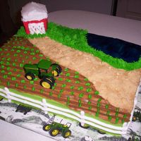 Andrew This was a strawberry cake iced in BC. The road was crushed Teddy Grams. The barn was shaped from cake scraps & the water was piping...