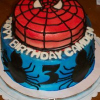 Spiderman Cake this cake was a copy of SusieLu182's cake. not nearly as good as hers, but I gave it my best shot. all vanilla cake w/ buttercream...