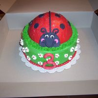Ladybug Cake   buttercream with fondant accents and cake sparkels
