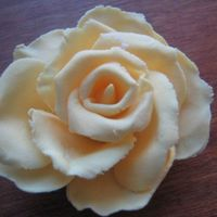Open Rose Hmm, my first try. I thing it turned out ok.It's made in FP