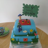 Super Mario Brothers Birthday!!  Super Mario Brothers cake for my sons 5th birthday. Chocolate and cherry cake covered in fondant. Accents and figures are all fondant....