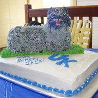 Dscf2443.jpg   University of Kentucky wildcat birthday cake. I used the lamb cake and adapted it into a wildcat.
