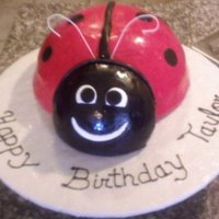 Red Ladybug 3D ladybug cake. I used a soccer ball pan for the body, and modified wilton sports ball pan for the head. Cake covered in red & black...