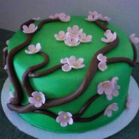 Blossom Branch Cake  Just had to do a pretty cake. I have always wanted to do a branch cake with blossoms and I really liked the way it turned out. Hope you do...