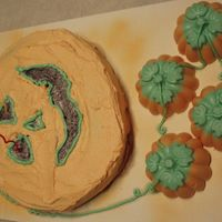 Pumkin Cake Pumpkin cake and candy for son's 12th birthday.