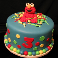 Birthday Elmo!