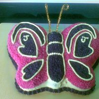 Beautiful Butterfly - Pink And Purple