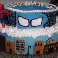 Spiderman Birthday Cake this was aq marbled cake with buttercream frosting used candybars and graham crackers for buildings and wiltons glitter gel for other...