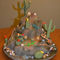 Snakes And Lizards Birthday Cake  I made this cake for my son's 5th Birthday as he was having a reptile show that included snakes lizards and turtles. The cake was...