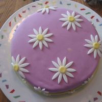 Daisy Cake I made this for my mother-in-law's 61st birthday. The pink is MMF-which I made on my own. The flowers are also MMF