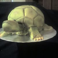 Turtle Grooms Cake Inspired by BethAnn Goldberg of Studio Cakes, I made this turtle groom's cake for a couple who's nicknames are Turtle and Queen (...